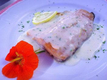 Grenoblese trout